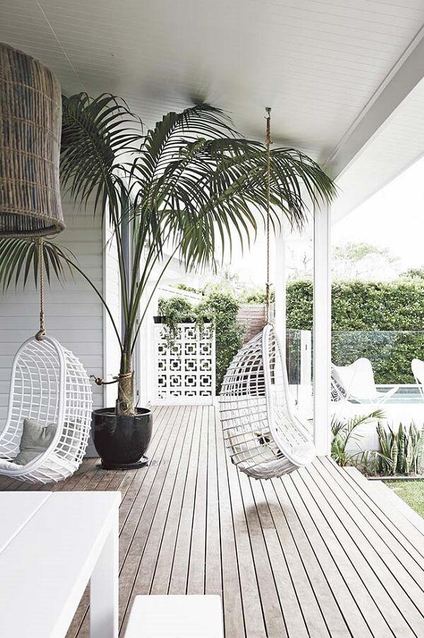 Tipos de palmeiras areca precisam de luminosidade