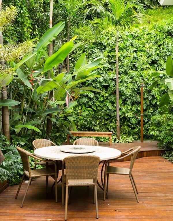 Tipos de palmeiras carpentárias