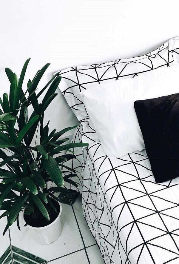 Tipos de palmeiras ráfia decora o quarto