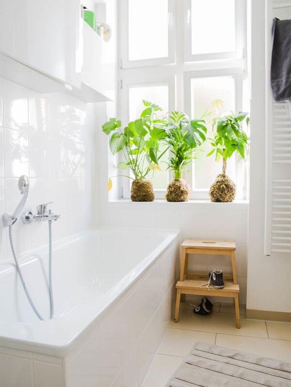 Arranjo de kokedama decora o ambiente de banheiro