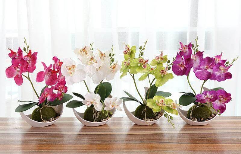 Flores da Primavera: +42 Decorações com Flores Típicas da Estação