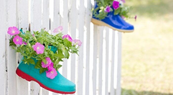 Botas que serve de vasos para a florada das petúnias
