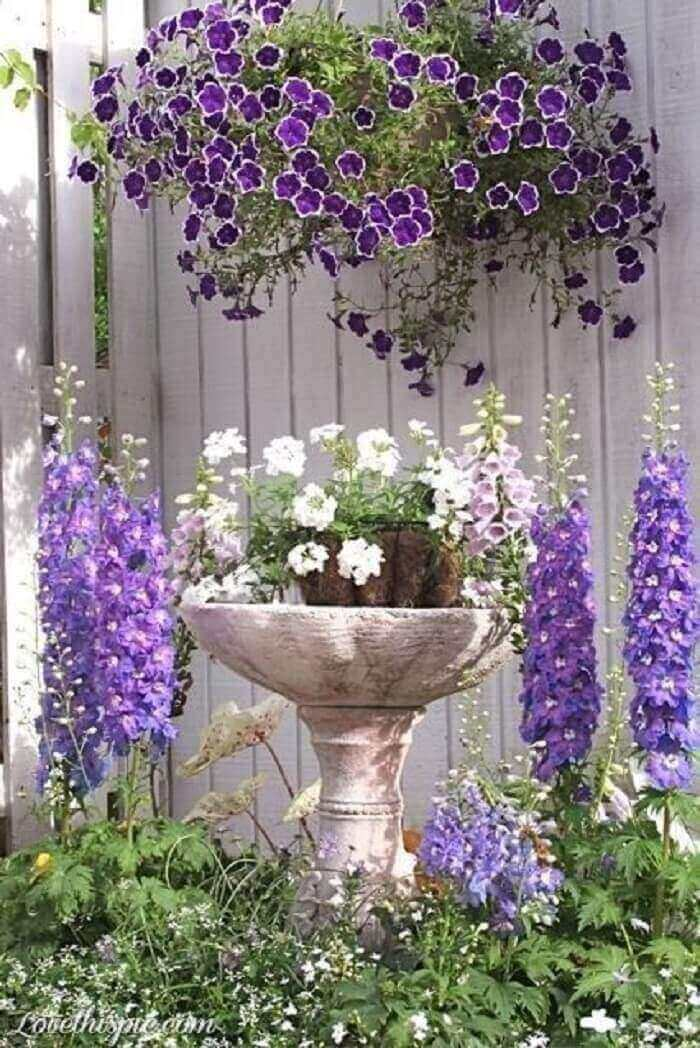 O contraste das cores que as flores de petúnia proporcionam é de encher os olhos
