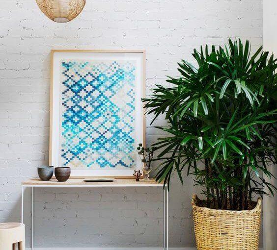 Palmeira Ráfia: Conheça a Planta e +61 Modelos Lindos