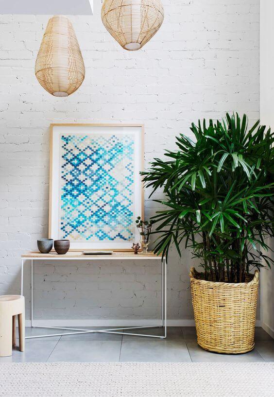 palmeira ráfia - palmeira ráfia em cachepot de palha