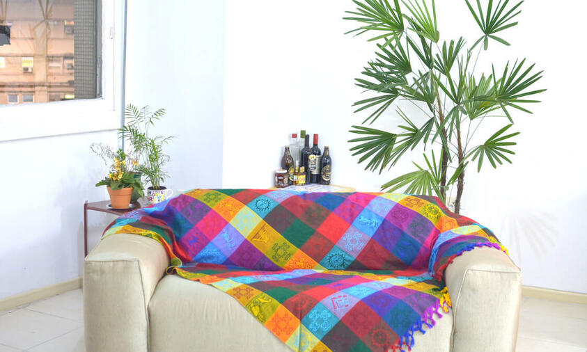 palmeira ráfia - palmeira ráfia em sala com sofá com manta colorida