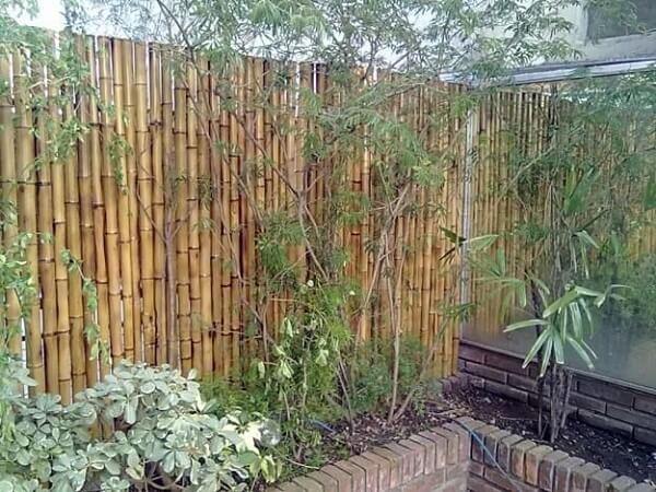 Área externa delimitada com cerca de bambu