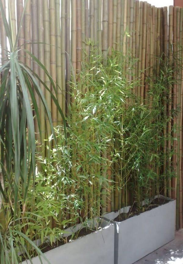Modelo de cerca de bambu fixada atrás dos vasos de concreto