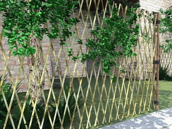 Modelo de cerca de bambu trançada