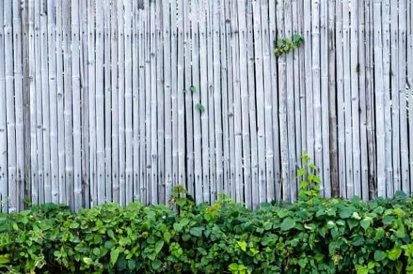 Decore o seu jardim com uma cerca de bambu