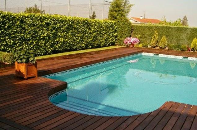 Borda de piscina de alvenaria com deck de madeira no jardim