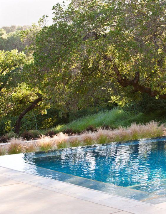 Borda de piscina com beirado de plantas