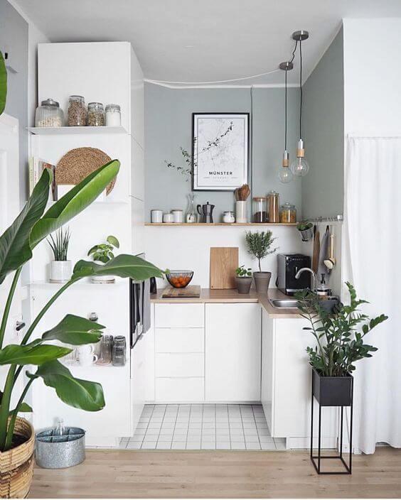 Que tal decorar a cozinha pequena com plantas