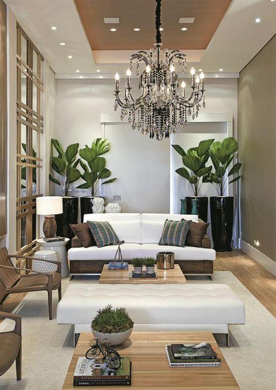 Sala decorada com vasos de palmeiras leque