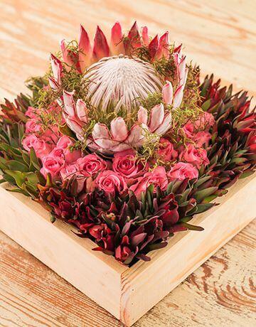 Enfeite com flores exóticas: protea