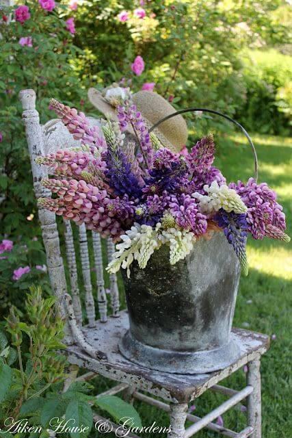 Flores roxas na decoração do jardim