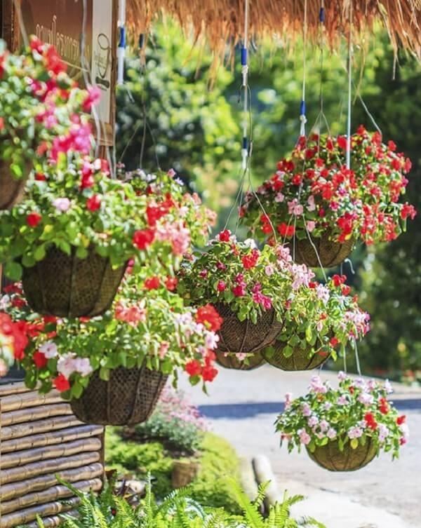 As flores para vasos suspensos deixam a fachada de casa alegre