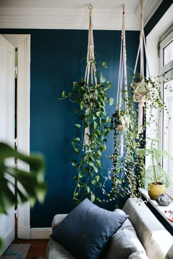Otimizando espaço e invista em vasos para jardim suspenso