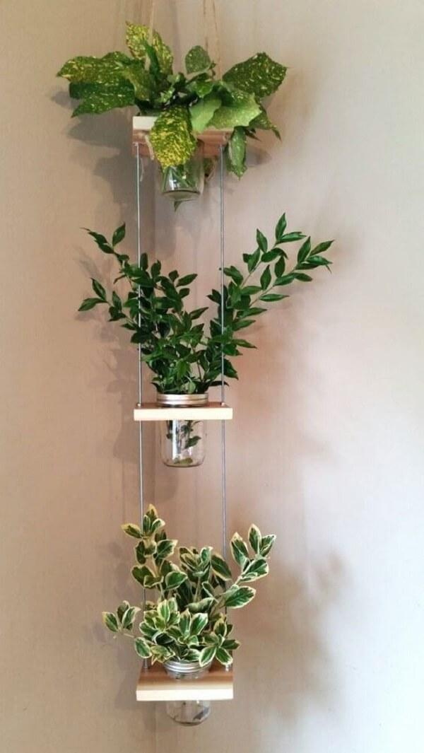 Planta ornamental plantada em vasos suspensos de canto