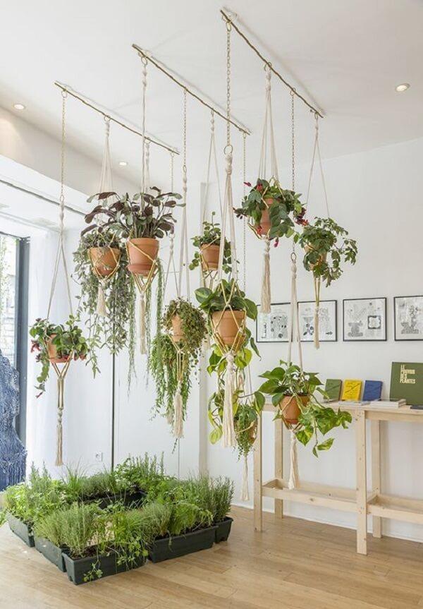 Vaso suspenso com diversas plantas