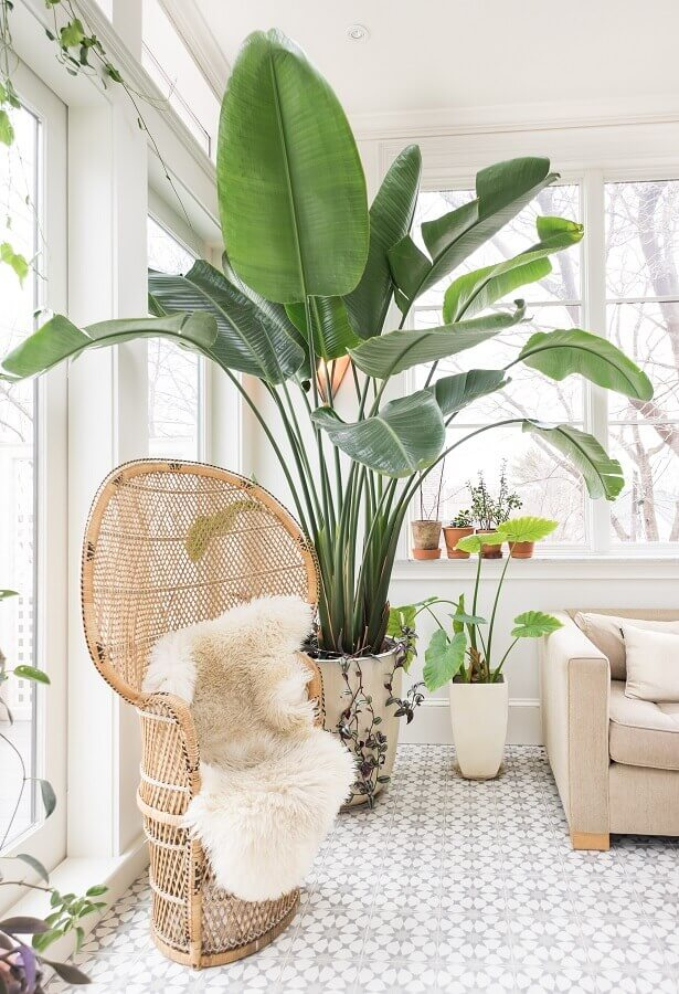 decoração clean com vasos decorativos grandes para salas branca Foto Apartment Therapy