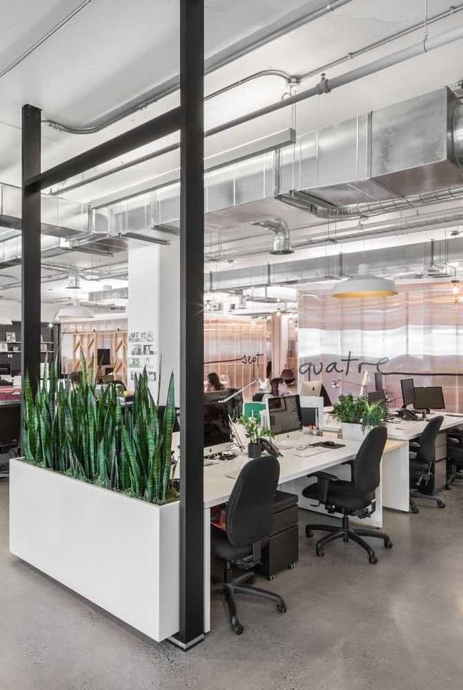 Divisórias para escritório com vaso de plantas
