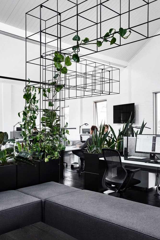 Divisórias para escritório com estante de ferro com plantas e móveis pretos