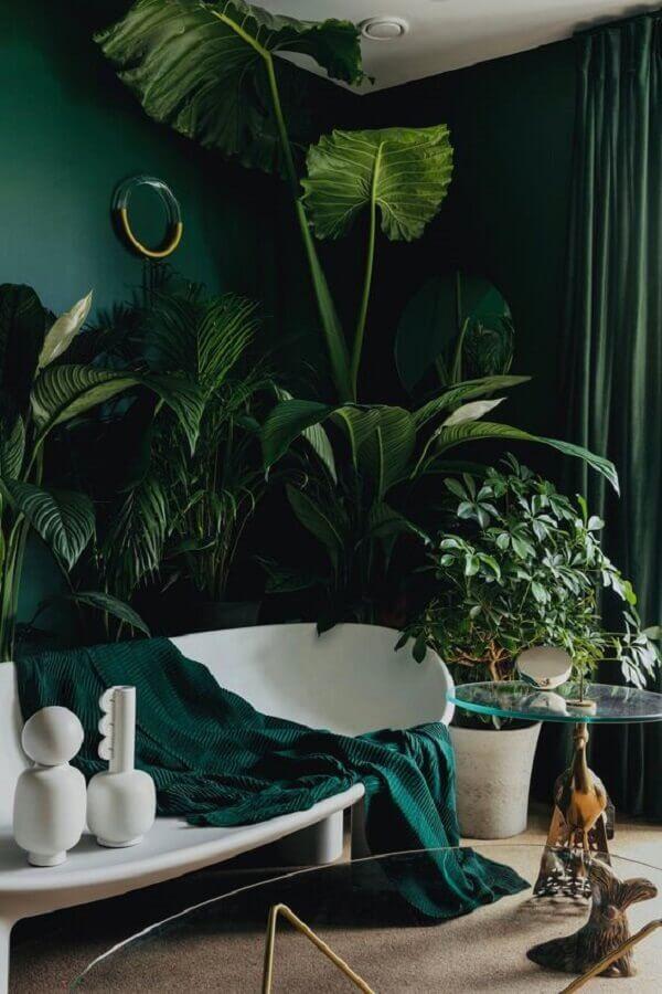 Plantas para decoração cor verde de sala com sofá branco moderno